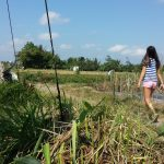 Sophie in a Field